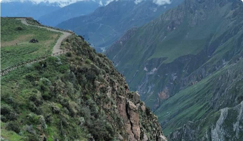 Kanion Colca w Peru