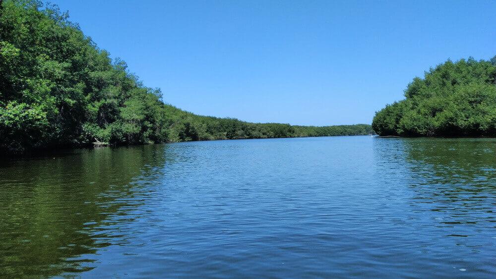 las mangrowy tumbes