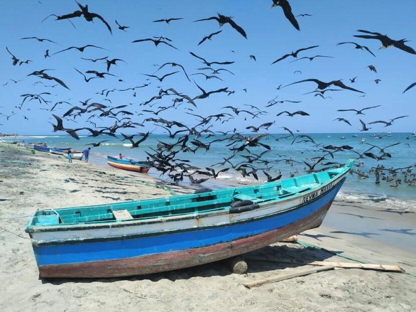 Plaże w Peru.