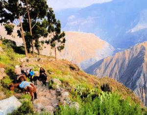 cañón del colca trekking