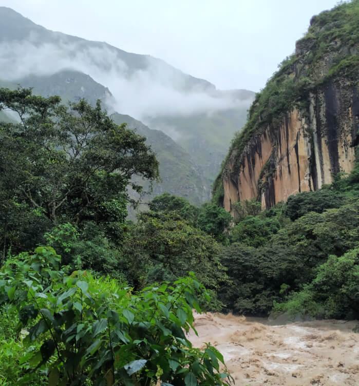 peru wycieczki dżungla
